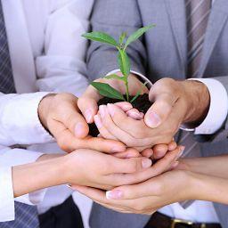 CODINA ASSOSIATS - Creación de Nuevas empresas