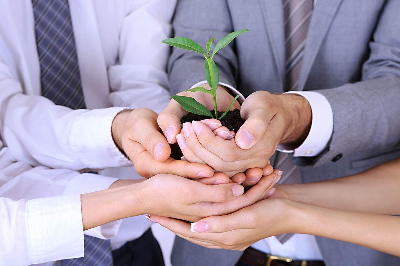CODINA ASSOSIATS - Creació de Noves empreses